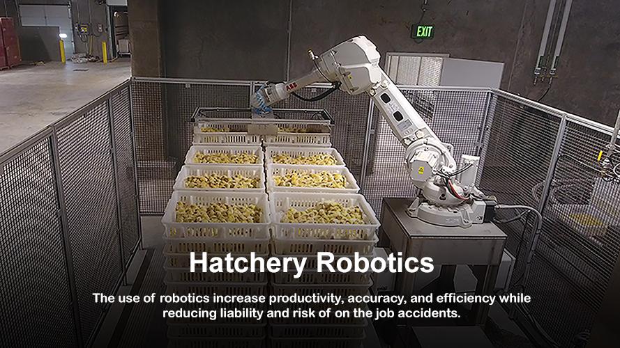 Hatchery Planning Company